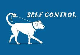 E´possível ter autocontrole emocional no dia a dia?