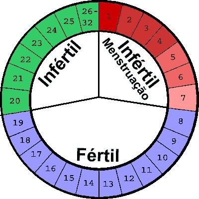 Entenda seu calendário hormonal