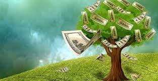 Dinheiro não nasce em árvore