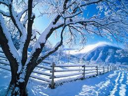 A magia da neve
